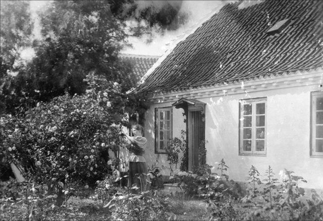 Marie Krøyer i haven ved Madam Bendsens hus - 1893